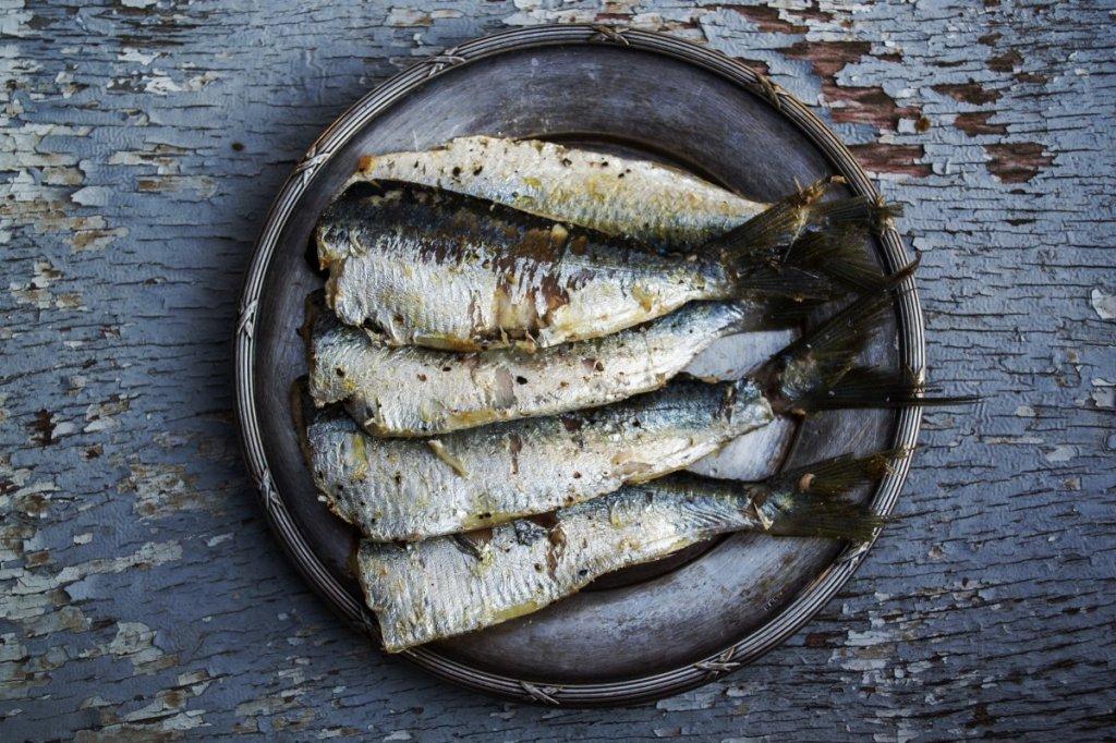 sardines_fish_plated_food_food_grilled_mediterranean_prepared_healthy-595966